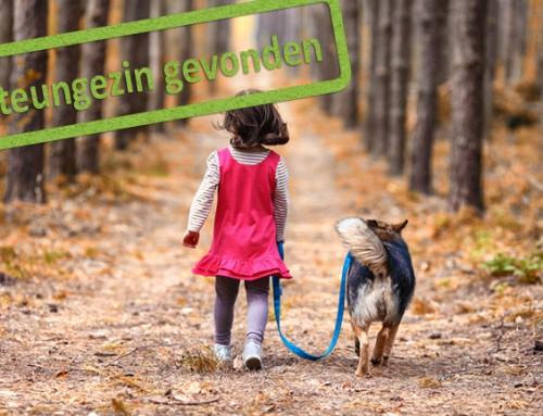 Hooggevoelig meisje van 6 jaar dat graag wil struinen in het bos