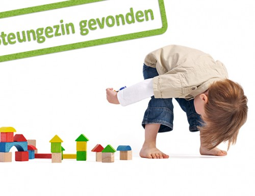 Rustig gezin gezocht voor peuter van (net) 3