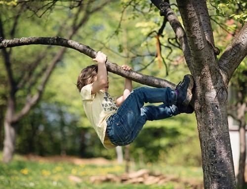 Speelgezin gezocht voor vrolijke jongen van 5  (omgeving Giessenburg)
