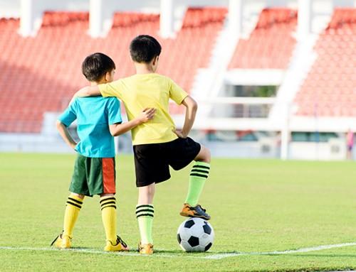 Steun-(groot)ouders gezocht voor twee energieke broers 10 en 6 jaar