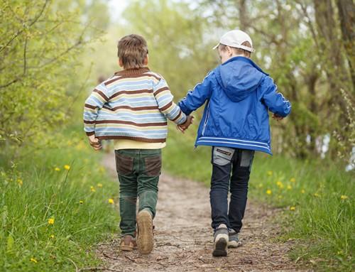 Speelgezin gezocht voor twee vrolijke jongens (5 en 7) uit Purmer-Zuid