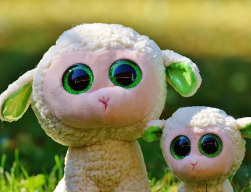 Welk liefdevol gezin in Wormerveer biedt baby van 12 maanden een tweede thuis?