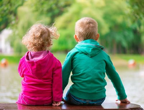 Steungezin gezocht broertje (2,5) en zusje (1) Groot-Ammers