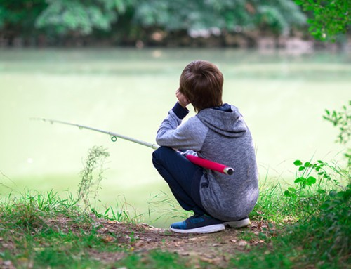 Gezellig gezin gezocht waar een 8-jarige af en toe mag 'meedraaien'
