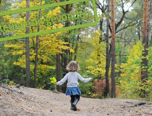 Warm steungezin gezocht voor vrolijk meisje van bijna vier