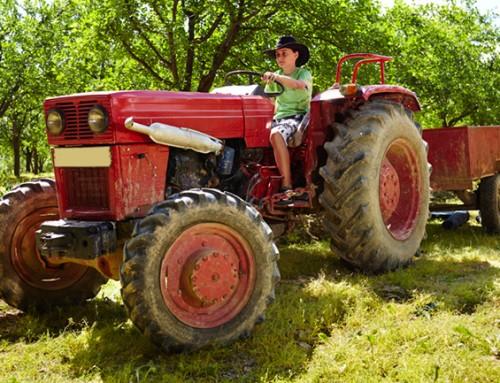 In welk gezin met boerderij en tractor is vrolijk buitenkind van 12 welkom?