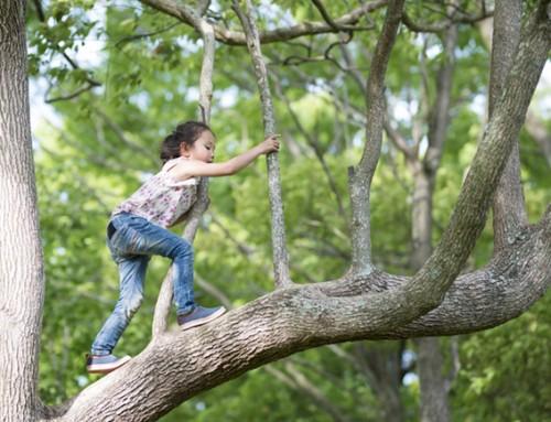 Steungezin gezocht voor een lief meisje van 6 jaar