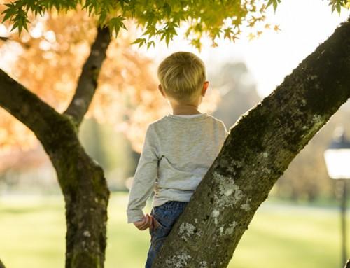 Steungezin gezocht voor vrolijke kleuter (4) Arkel en omgeving