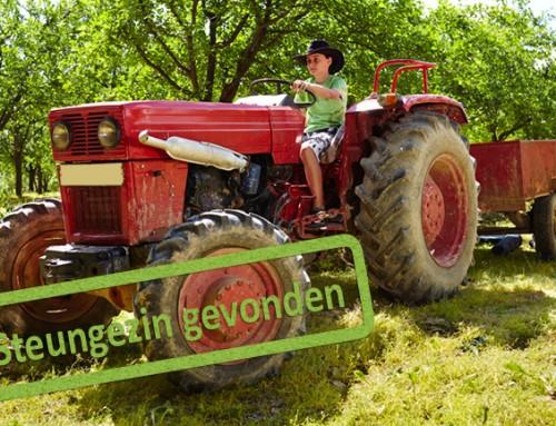 In welk gezin met boerderij of grote tuin is  stoere vrijbuiter van 9 jaar welkom?