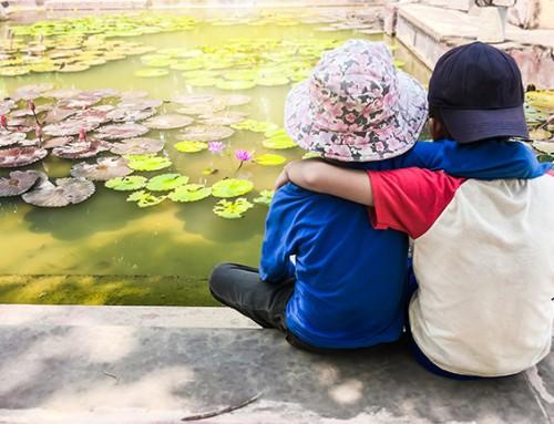 Steungezin gezocht voor bijzondere tweeling (6 jaar) omgeving Arkel