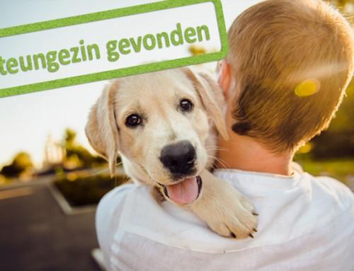 Dierenliefhebbers gezocht voor jongen van 6 jaar uit Heemskerk