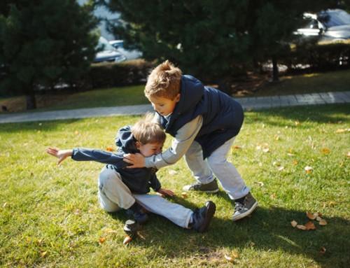 Speelgezin gezocht voor twee jongens van 8 en 4