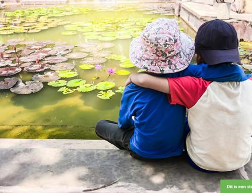 Steungezin gezocht voor een lieve jongen van 5 jaar