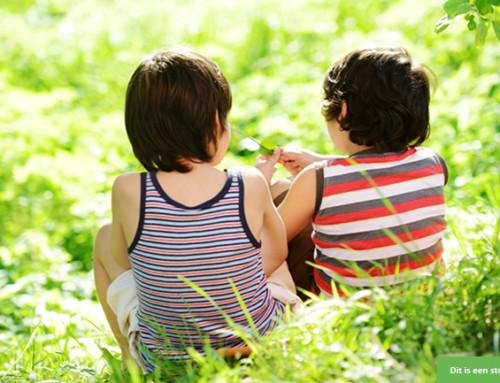Steungezin gezocht voor 8-jarige technische jongen